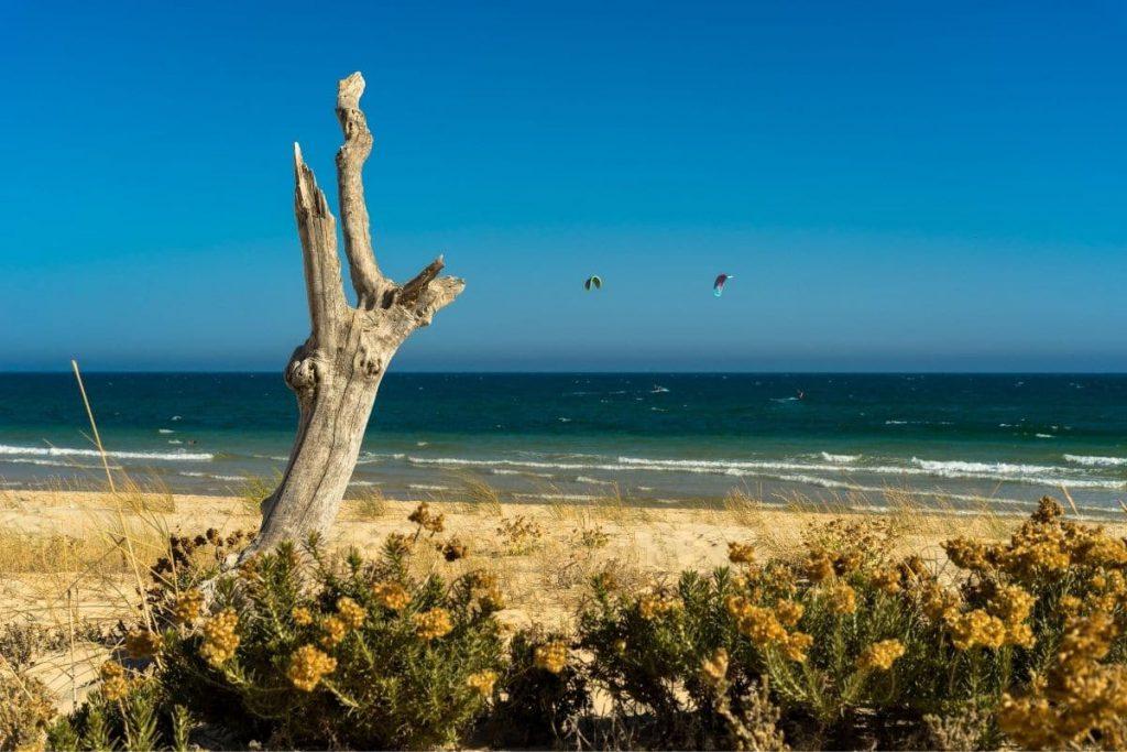 Tavira plage de sable